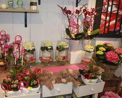 Les Bouquets d'Elise – Fretin - Une belle boutique !!!!
